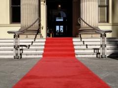 Красная дорожка (классика) 5м